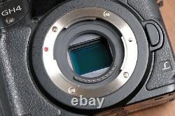 Panasonic LUMIX GH4 16MP Professional 4K Mirrorless Camera withBattery & Charger