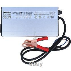 XENES LiFePO4 CCCV PRO Smart 230V Ladegerät 12,8V 25,6V 51,2V Lithium Batterie